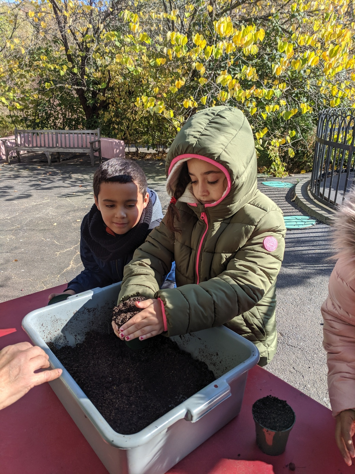 kids working with soil in the park